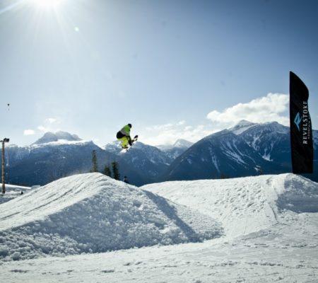 proboard designs bindingless snowskate